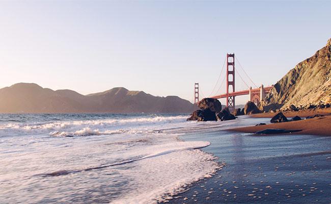 San Francisco Bay Option Report