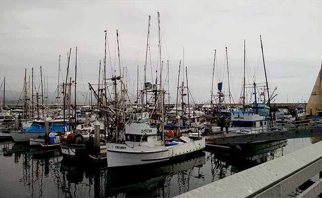 Informing Fisheries Partnerships in California